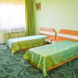 Стая в успокояващ зелен цвят